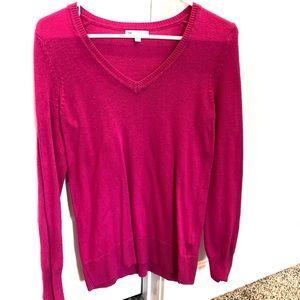 Staple V-neck gap sweater